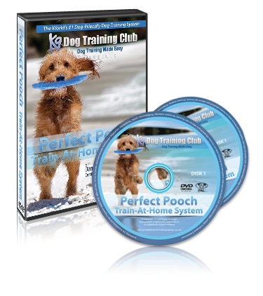 Perfect Pooch Train At Home System
